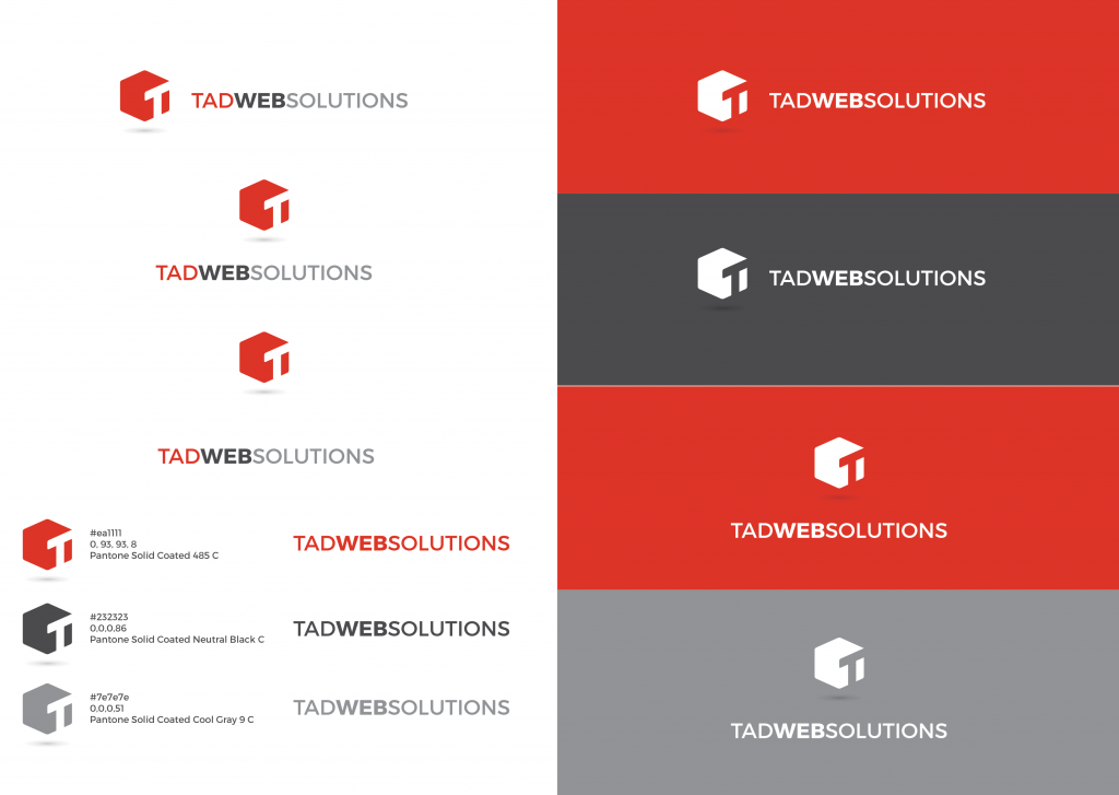 Tad Web Solutions branding as of October 2016 by Squegg